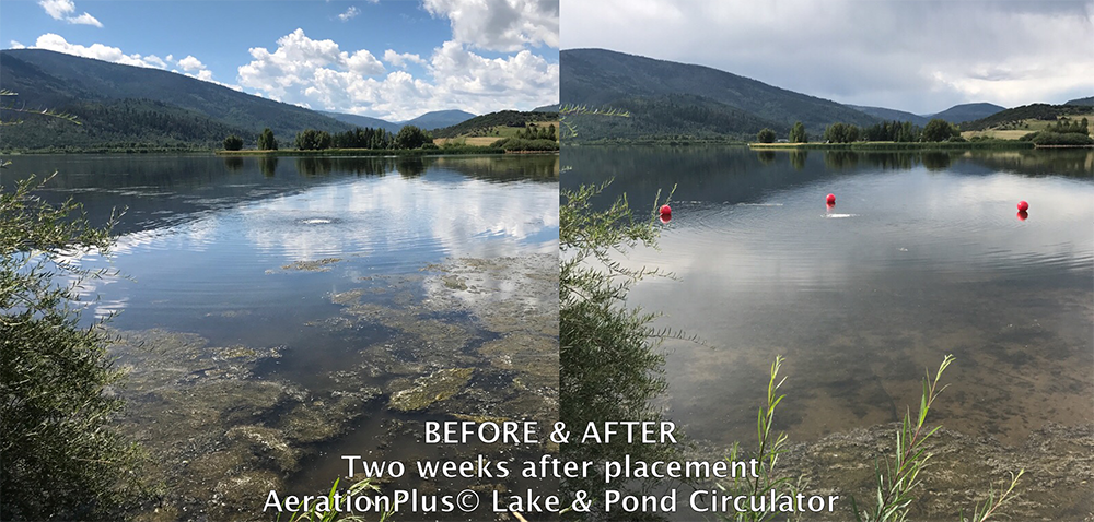 AerationPlus lake & pond circulator before and after images