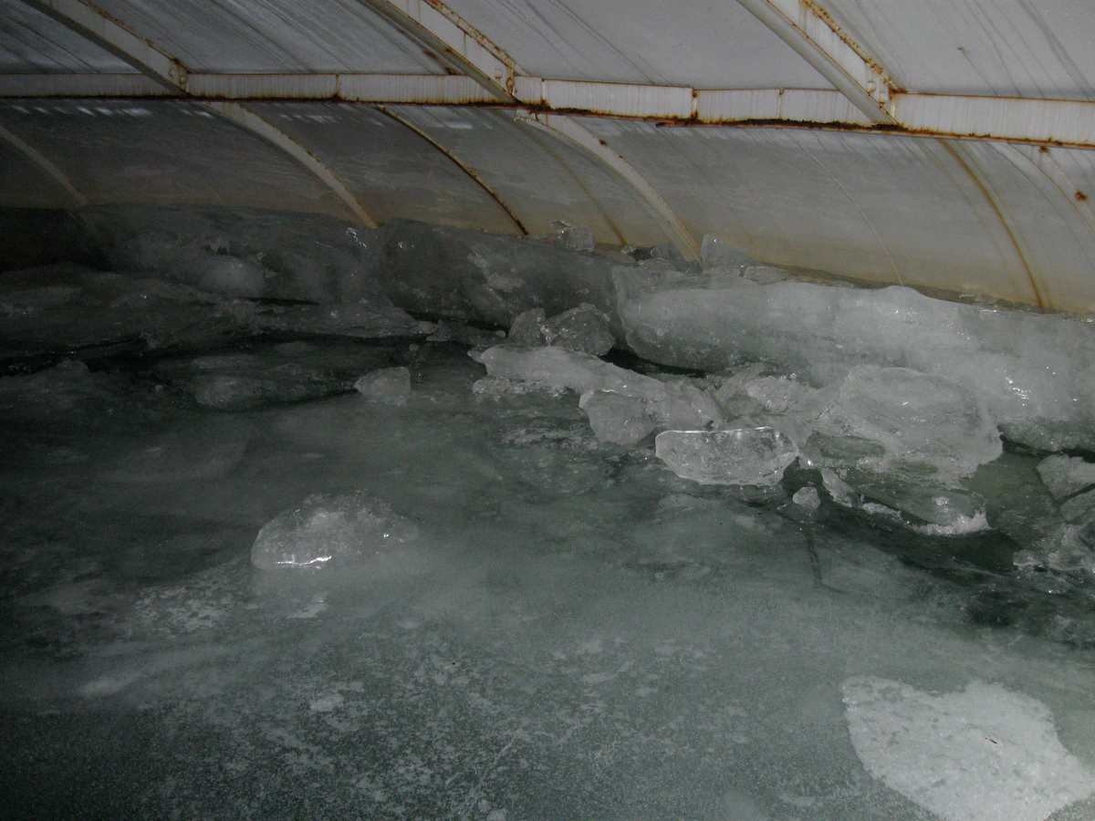 ice in potable water storage tank