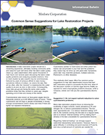 icon for Top 5 Common Sense Suggestions For Lake Restoration document