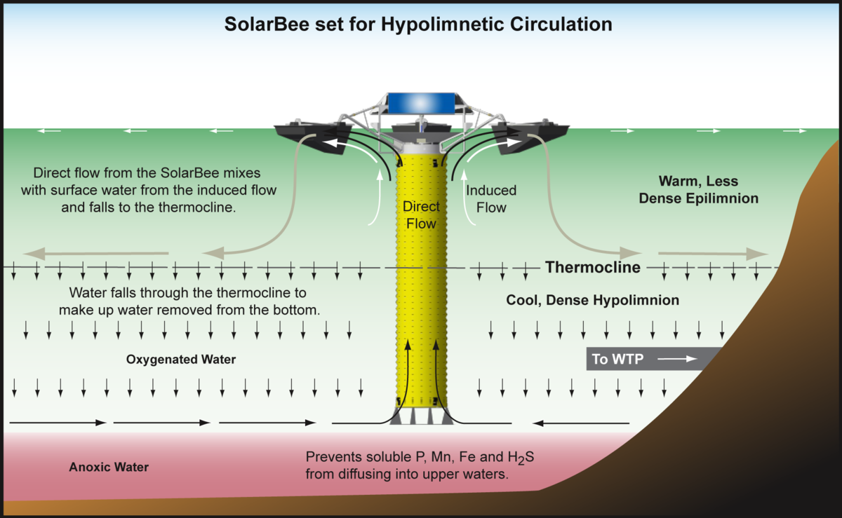 graphic showing how SolarBee lake circulators perform hypolimnetic withdrawal in a drinking water reservoir