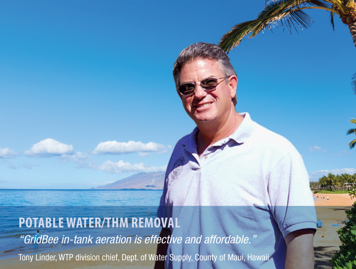 effective & affordable THM TTHM trihalomethane removal smiling in Hawaii sun